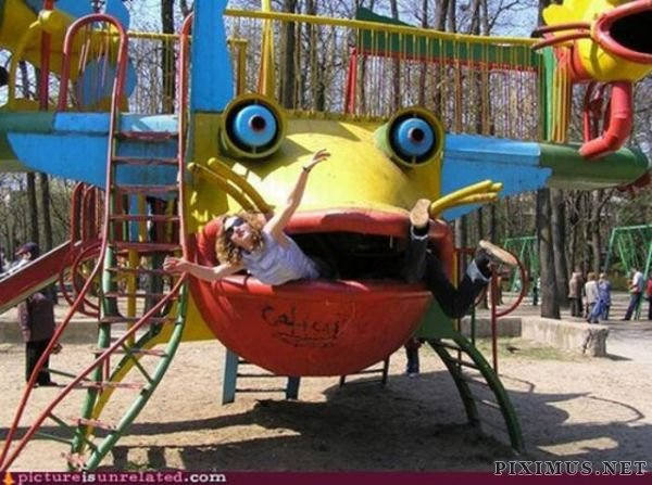 WTF Pictures, part 8