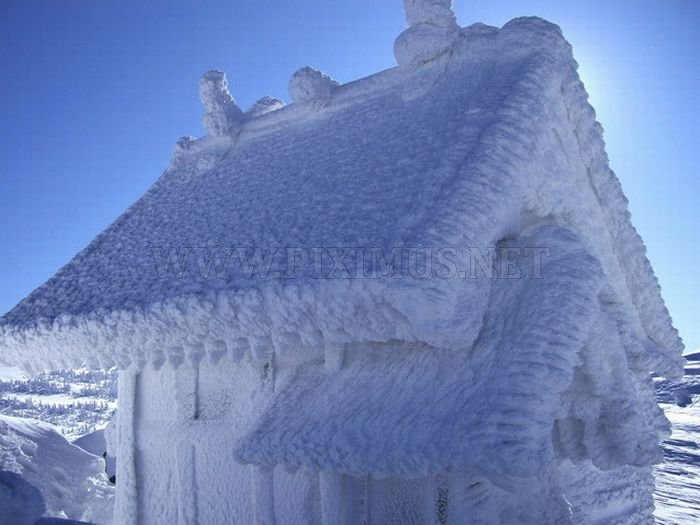 Snow Monster of Japan