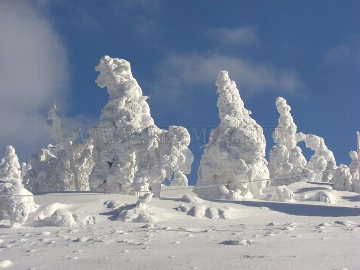 Snow Monster of Japan