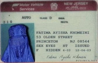 Hilarious Driver's Licenses