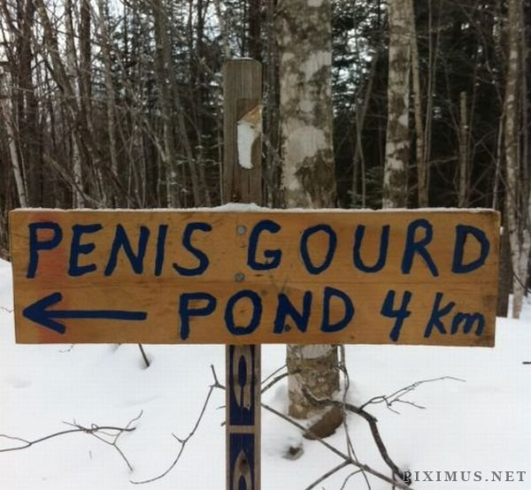 WTF Signs, part 13