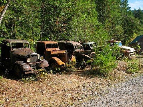 Forgotten Trucks