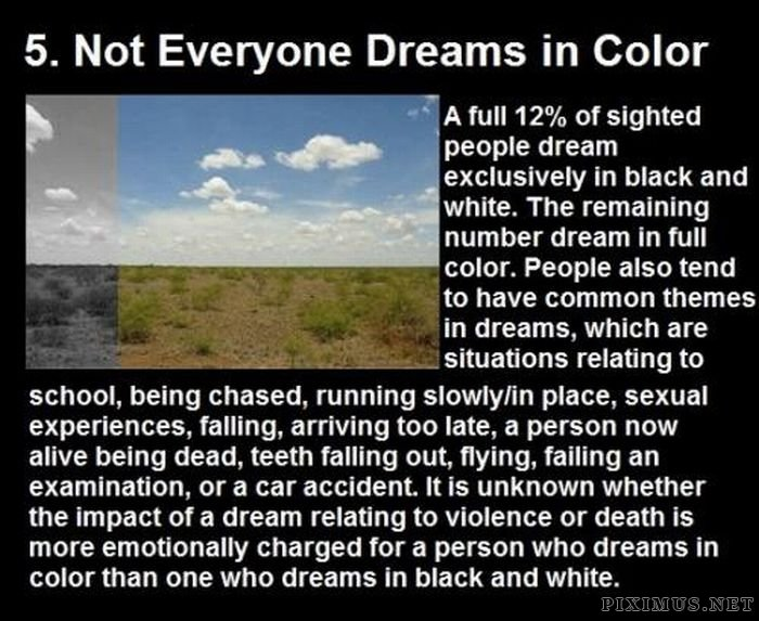 Facts About Dreams