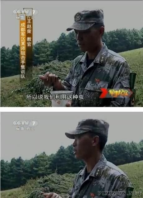 Chinese Snipers at Practice