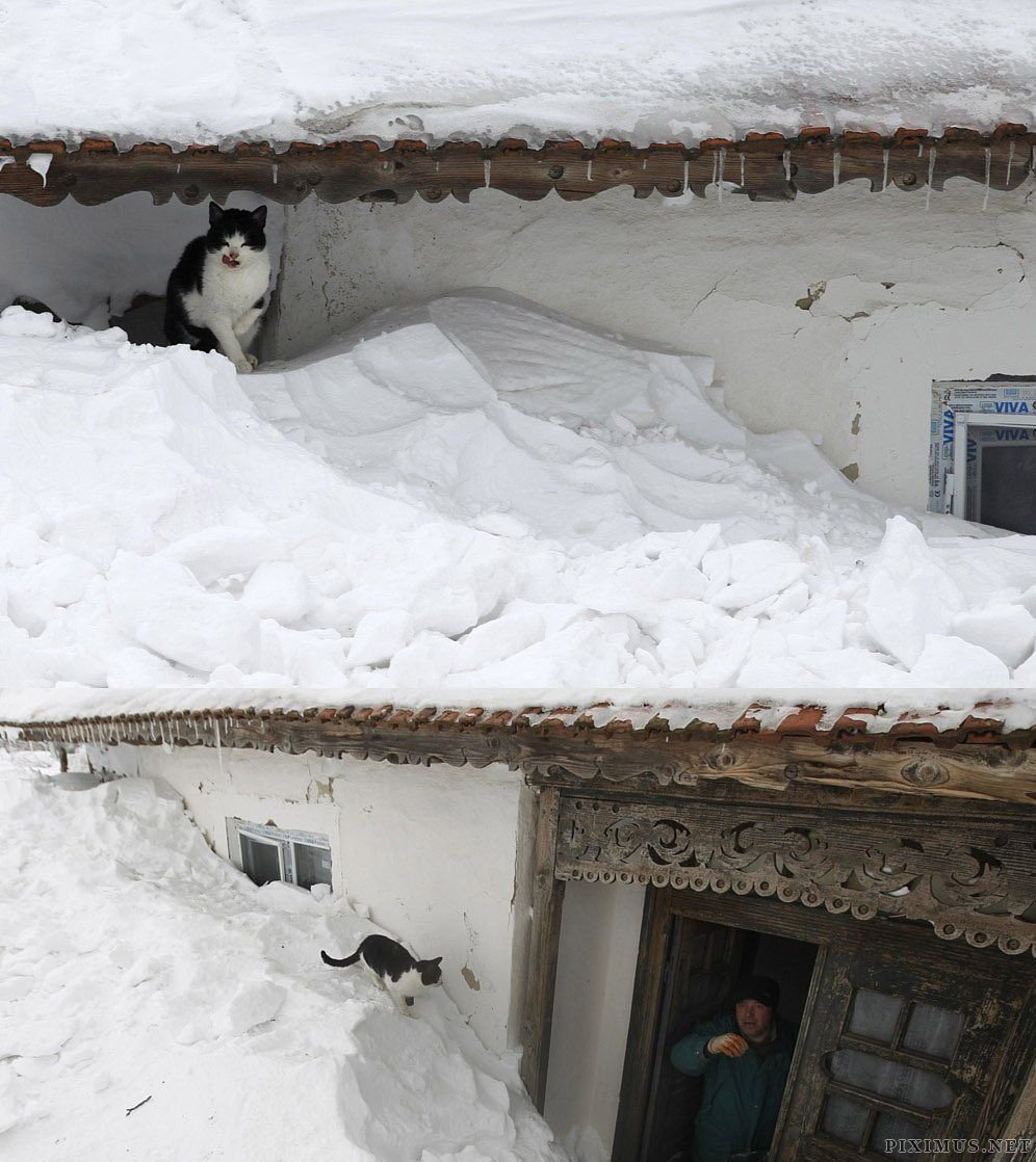 That's Really Heavy Snow