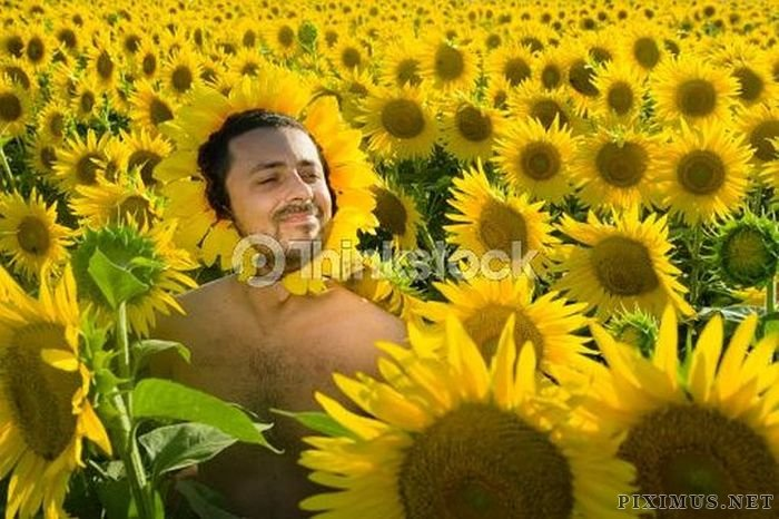 the most awkward stock pictures part 3 fun