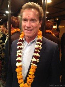 Arnold Schwarzenegger Twitpics