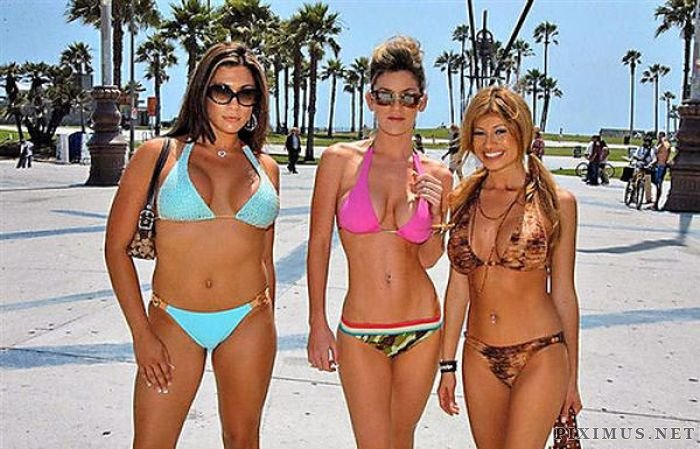 Bikini Girls at Daytona 500