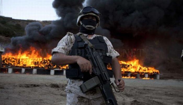 Mexico Burns 134 Tons of Confiscated Marijuana