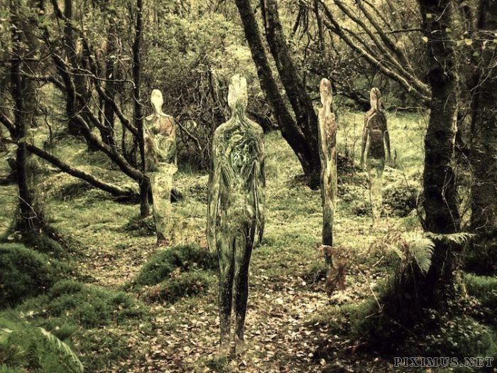Acrylic Glass Statues Scare Tourists
