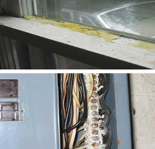 The Worst House Repair Jobs, part 2