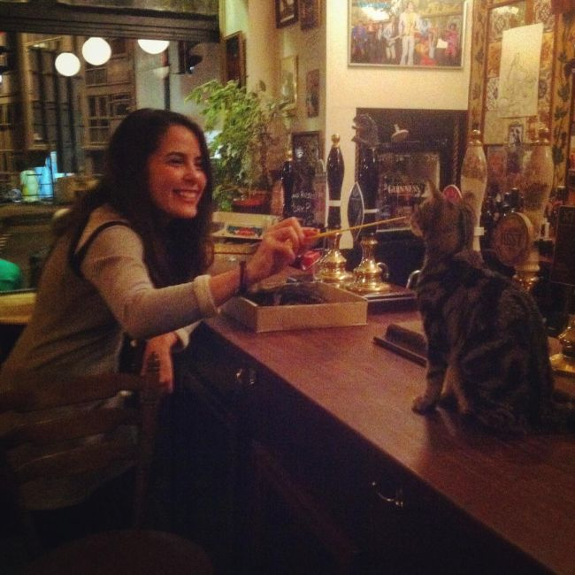 Now You Can Drink With Cats At This Cat Pub In The UK