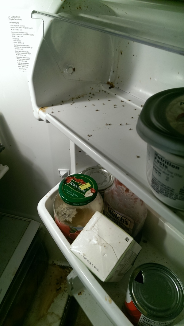 There's Definitely Something Living In This Fridge
