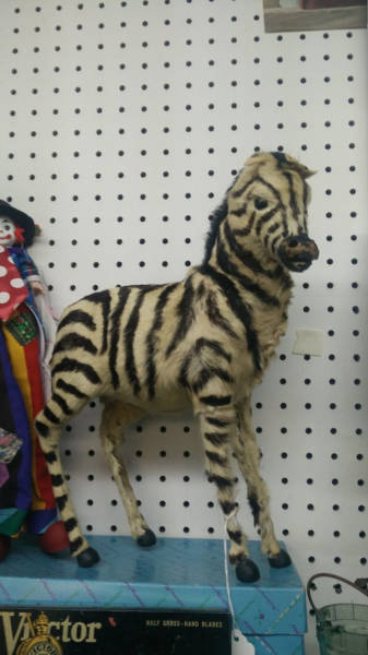 Cool Thrift Shop Items That Are A Little On The Strange Side