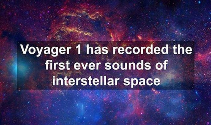 Fun Facts That Will Satisfy Your Thirst For Knowledge
