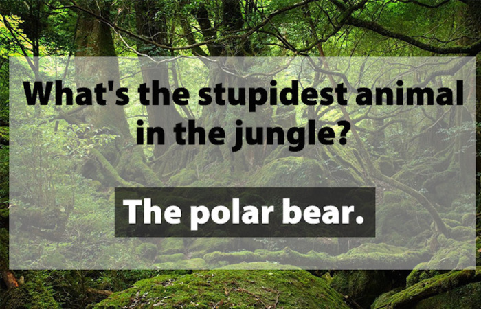 Dad Jokes That Will Satisfy The Father In All Of Us