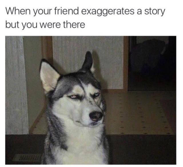 Memes That Will Deliver The Laughs You Need Right Now