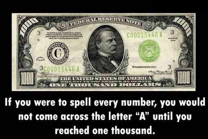 You Will Be So Much Smarter After You Learn These Fun Facts