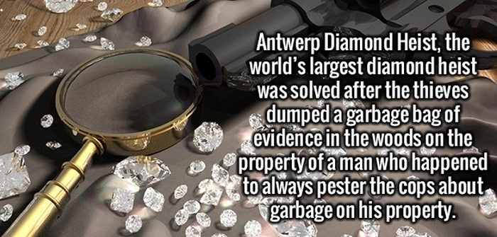 Awesome And Fun Facts About Anything And Everything