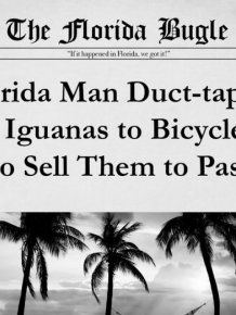 The 25 Most Bizarre News Headlines From Florida In 2015