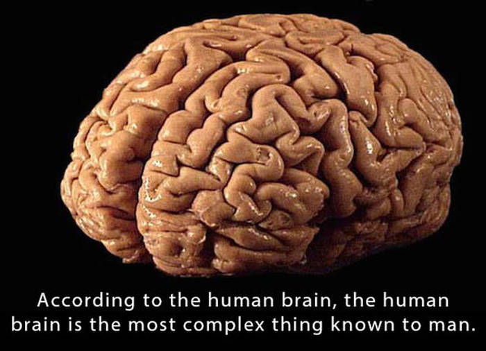 Interesting Facts That Will Blow Your Mind To Pieces
