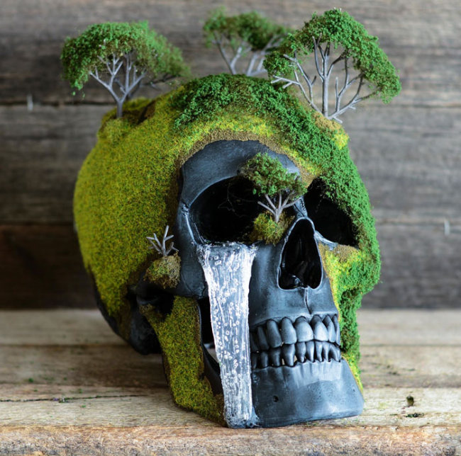 Creep Up Your Living Room With A Bonsai Skull