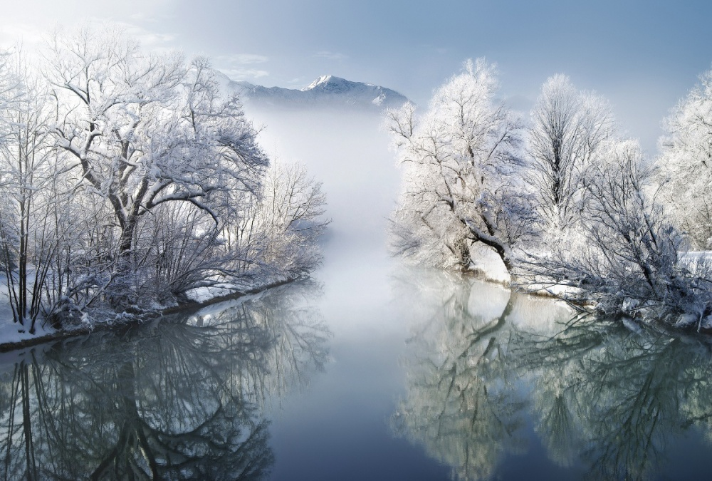 Beautiful winter photos
