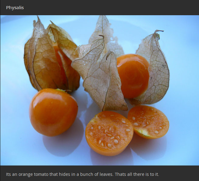 Exotic Fruits That Every Fruit Lover Needs To Try At Least Once
