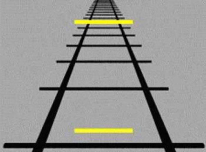 Magical Optical Illusions That Will Seriously Mess With Your Brain