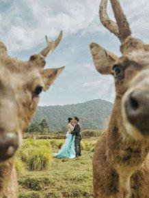 Funny Couples That Took Their Wedding Photos To The Next Level