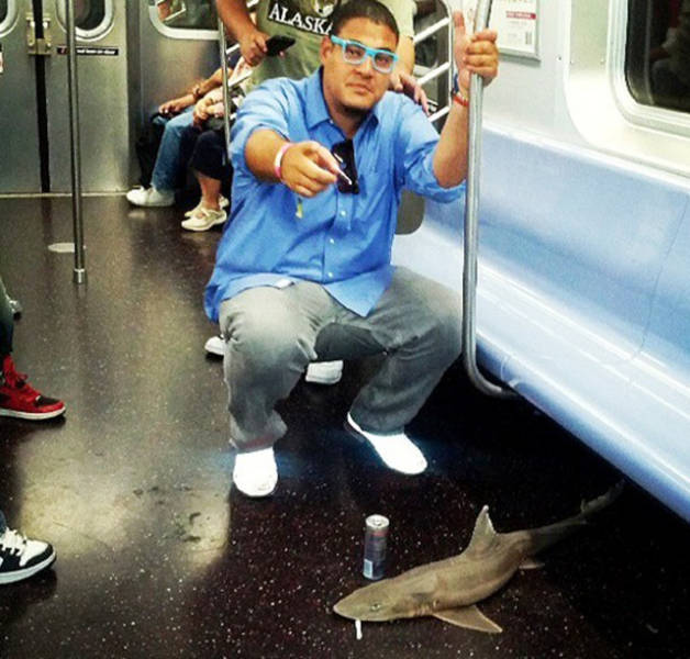 The Most Ridiculous Moments To Ever Happen On The NYC Subway