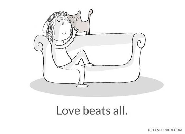 Important Life Lessons We Can All Learn From Cats