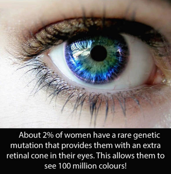 Amazing And Entertaining Facts About Eyes