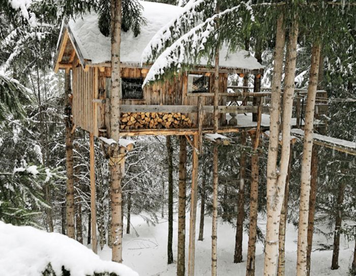 Amazing Treehouse, part 2