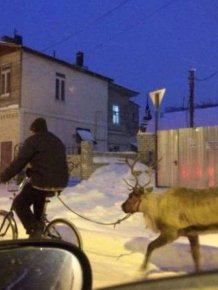 Everyday Life In Russia Is A Little Too Extreme For Most People