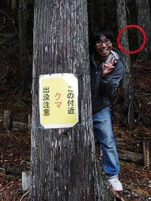Keep Your Eyes On The Red Circle