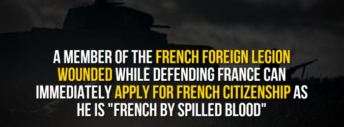 Fun Facts You Need To Know About France