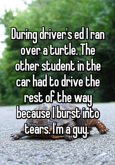 People Reveal Awkward Driver's Ed Confessions