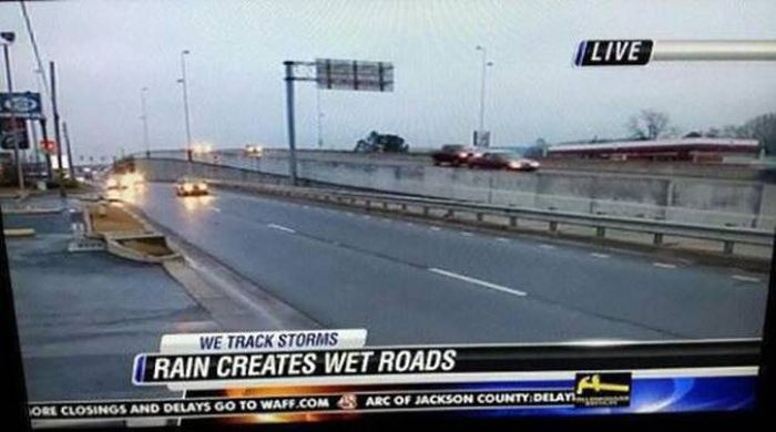 People Who Definitely Earned The Nickname Captain Obvious