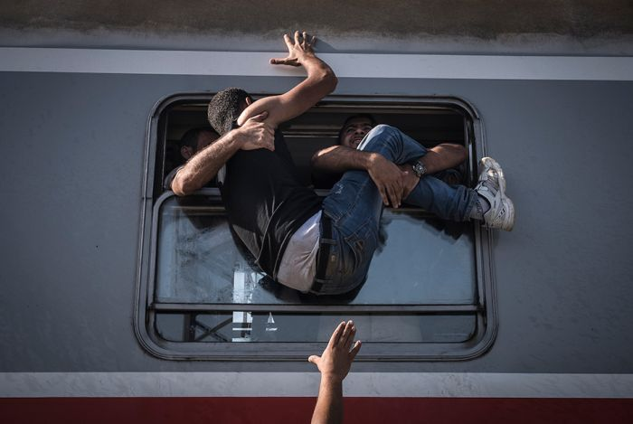 The Best Images From The 2015 World Press Photo Contest
