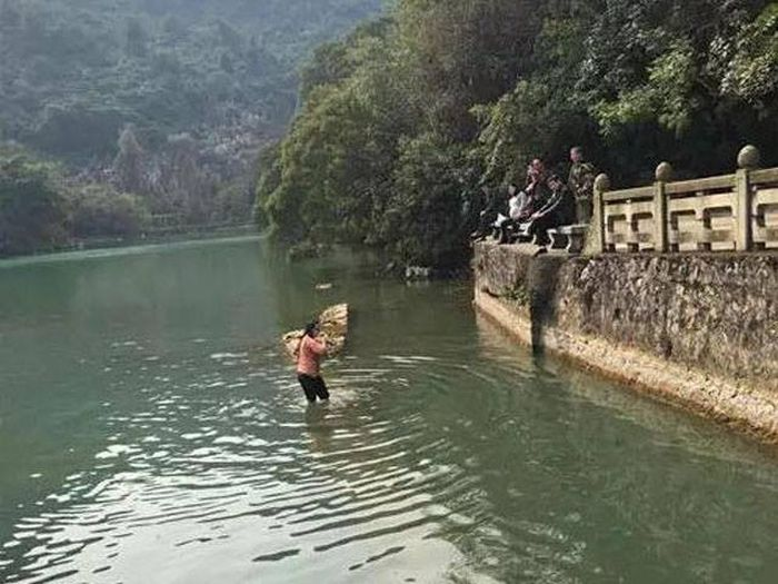 This Woman Dove Into A Freezing Cold Lake To Get Her iPhone Back