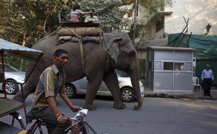 Get A Dose Of Daily Life In India