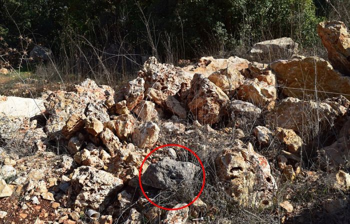 Can You Figure Out Which One Of These Rocks Is Actually A Bomb?
