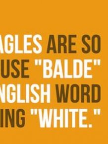 Important Facts About English Language That You Need To Know