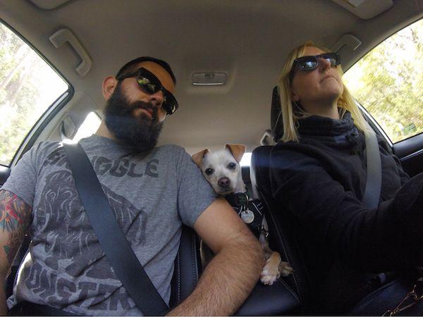 Dog - Man's Best Friend, part 7
