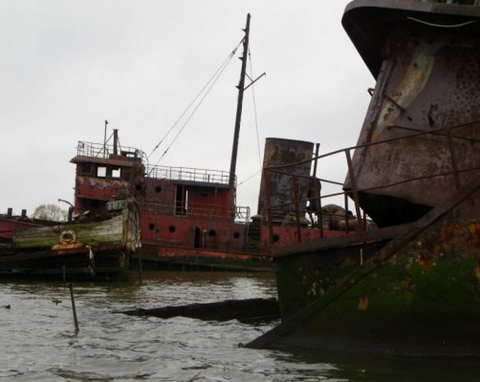 A New York City Harbor Has Become A Graveyard For Old Ships
