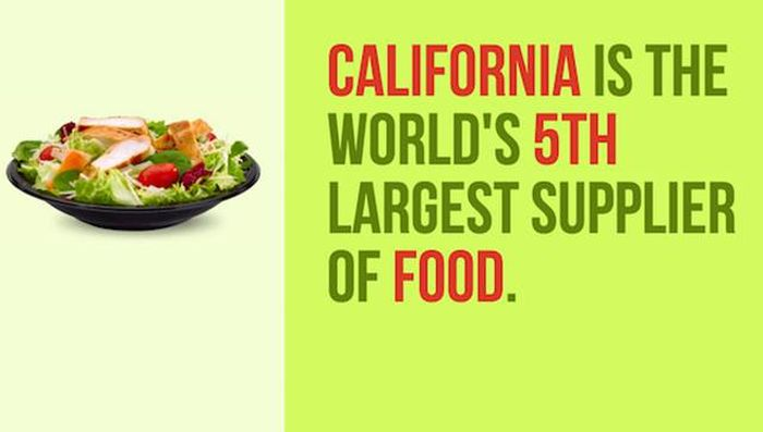 Cool Facts About California, The Golden State