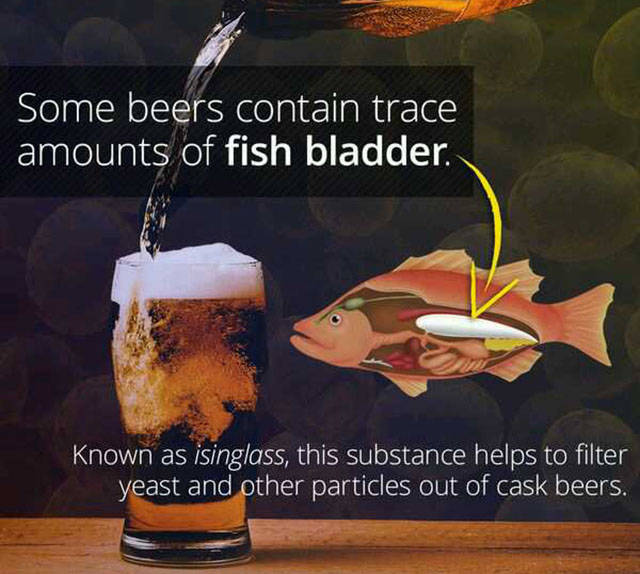 Weird And Random Facts That Are Definitely Worth Knowing