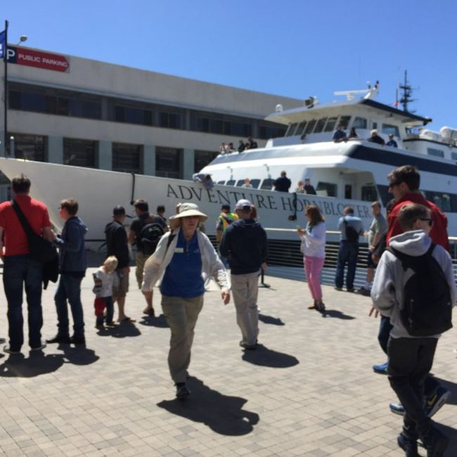 Cruise Ship Collides With A Dock In San Diego