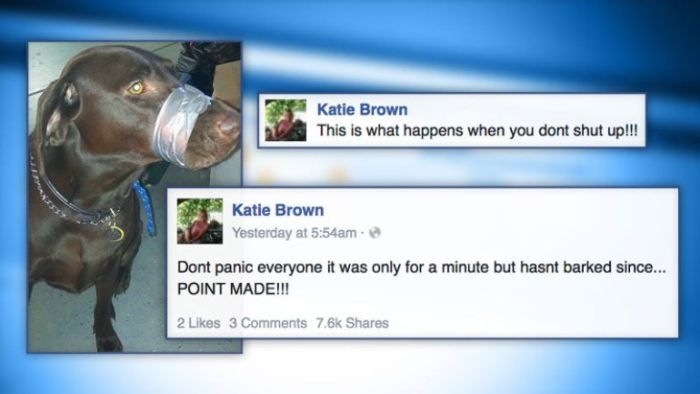 15 Stupid People Who Screwed Up Big Time On Social Media